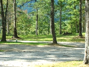Campground - RV Campground - Camp Wildcat Adventures Park